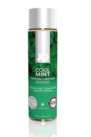 Ароматизированный лубрикант Мята на водной основе JO Flavored Cool Mint H2O 4 oz (120 мл.)