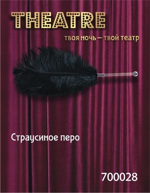 Перо TOYFA Theatre страусиное черное,40 см фото